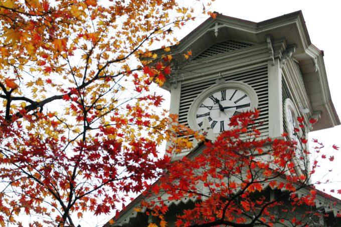 札幌市時計台紅葉