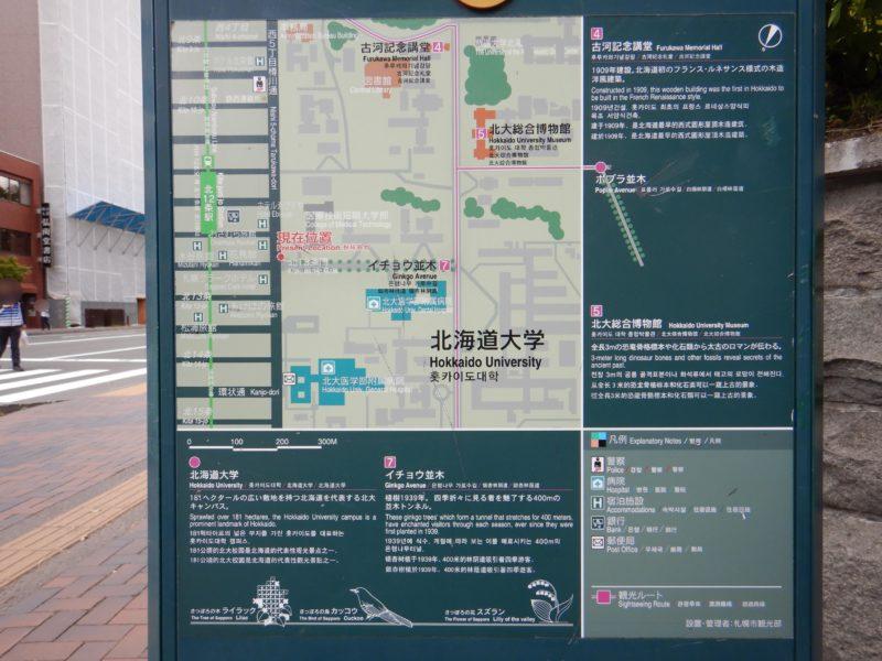 北大イチョウ並木周辺の地図