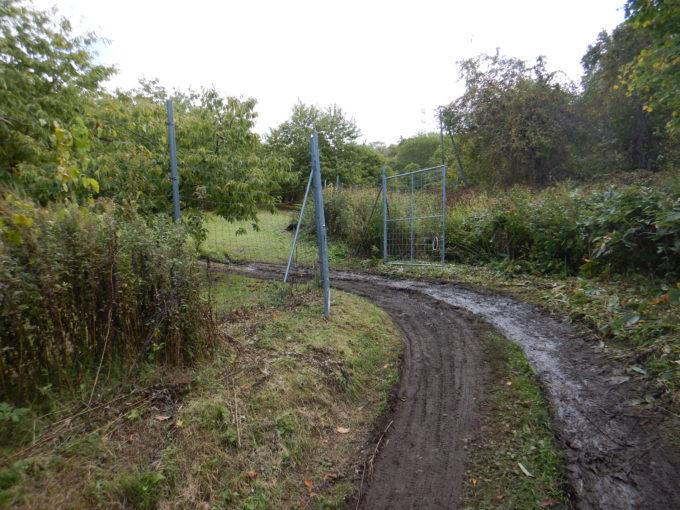 栗園のゲート