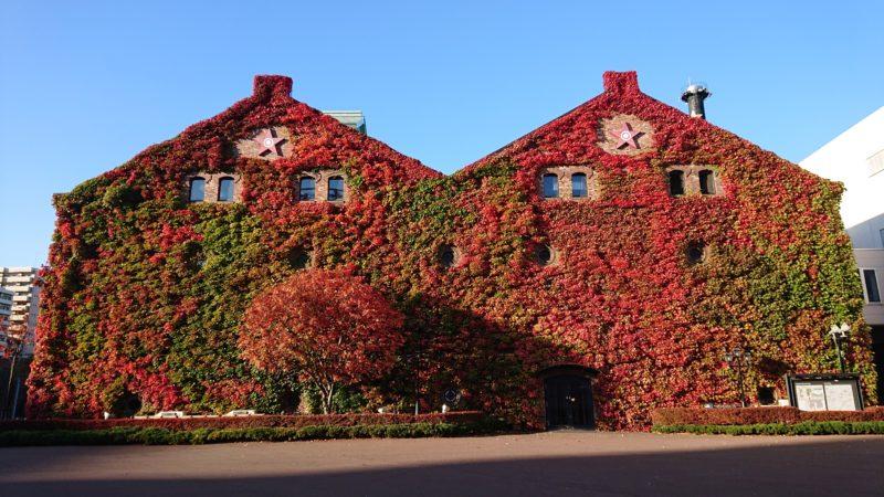 サッポロファクトリーレンガ館のツタ紅葉正面