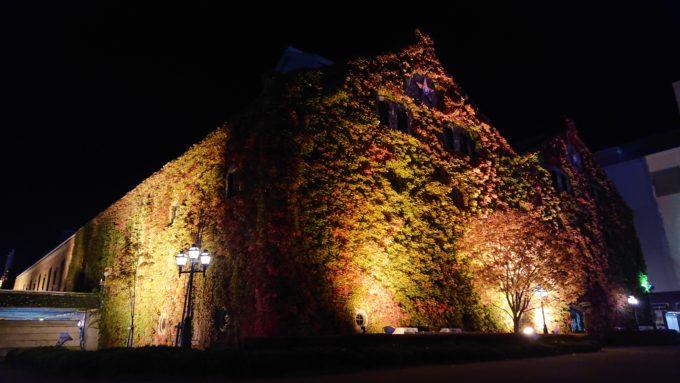 夜にライトアップされるサッポロファクトリーレンガ館のツタ紅葉