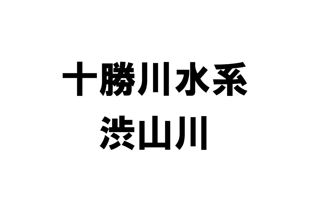 渋山川(十勝川水系)の河川ライブカメラ一覧